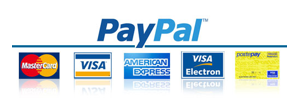 icone paypal