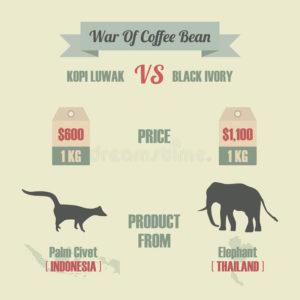 war-coffee-bean
