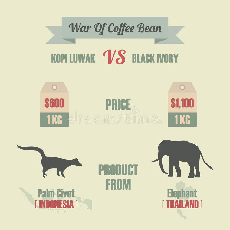 war-coffee-bean
